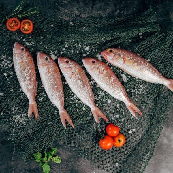 omega-3-fisch