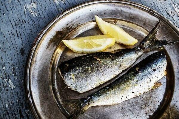 omega-3-fettsäuren-fisch
